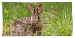 Nesting Rabbit Beach Sheet by Terry DeLuco