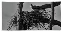 Beach Towel featuring the photograph Nesting V2 by Douglas Barnard