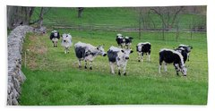 Beach Sheet featuring the photograph New England Spring Pasture Square by Bill Wakeley