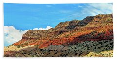 New Mexico Landscape Beach Sheet by Gina Savage