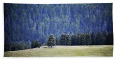 Beach Sheet featuring the photograph New Mexico Valles Caldera Trees Landscape by Andrea Hazel Ihlefeld