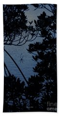 Beach Towel featuring the photograph Night Banana Spider by Megan Dirsa-DuBois