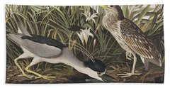 Night Heron Or Qua Bird Beach Towel by John James Audubon
