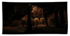 Night In The Park  Beach Towel