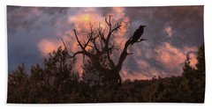 Night Of The Raven Beach Towel