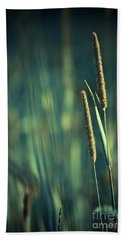 Night Whispers Beach Towel