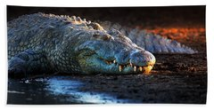 Nile Crocodile On Riverbank-1 Beach Towel by Johan Swanepoel