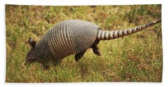 Nine-banded Armadillo Jumping Beach Sheet