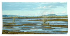 Nisqually Looking North Beach Towel
