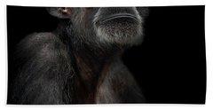 Chimpanzee Beach Sheets