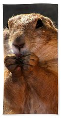 Snacking Prairie Dog Beach Towel