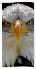 North American Bald Eagle  Beach Towel