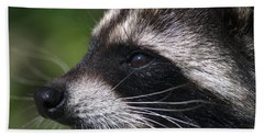 North American Raccoon Profile Beach Towel by Sharon Talson