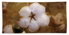 North Carolina Cotton Boll Beach Sheet by Benanne Stiens