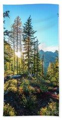 North Cascades Fall Sunlight Beach Towel