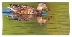 Norther Shoveler Female Beach Towel by Tam Ryan