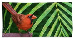 Northern Cardinal Beach Sheet