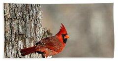 Northern Cardinal On Tree Beach Towel