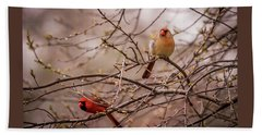 Beach Sheet featuring the photograph Northern Cardinal Pair In Spring by Terry DeLuco