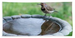Northern Flicker Reflection New Jersey Beach Towel