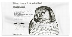 Northern Hawk-owl Infographic Poster Beach Towel