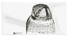 Northern Hawk-owl Beach Towel
