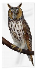 Northern Long-eared Owl Asio Otus - Hibou Moyen-duc - Buho Chico - Hornuggla - Nationalpark Eifel Beach Towel