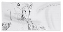 Northern Royal Albatross Beach Towel