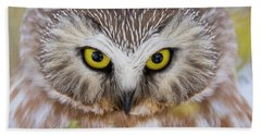 Beach Towel featuring the photograph Northern Saw-whet Owl Portrait by Mircea Costina Photography
