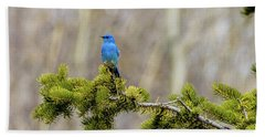 Notice The Pretty Bluebird Beach Towel by Yeates Photography