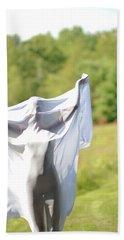 Spirit Like Beach Towel