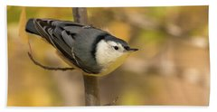 Nuthatch In Fall Beach Sheet