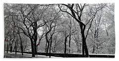 Beach Towel featuring the photograph Nyc Winter Wonderland by Vannetta Ferguson
