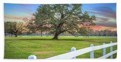 Oak Alley Signature Tree At Sunset Beach Towel