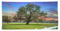 Oak Alley Signature Tree At Sunset Beach Sheet