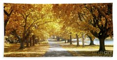 Oak Tree Avenue In Autumn Beach Towel