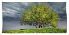 Oak Tree With Tire Swing Beach Towel