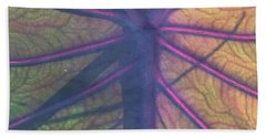Beach Towel featuring the photograph October Leaf by Peg Toliver