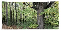 October Trees Beach Towel