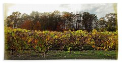 Beach Sheet featuring the photograph Ohio Winery In Autumn by Joan  Minchak
