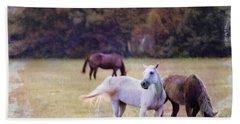 Ok Horse Ranch_1c Beach Sheet