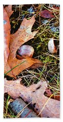 Old Acorns And Leaves Beach Towel