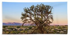 Old Growth Cholla Cactus View 2 Beach Towel