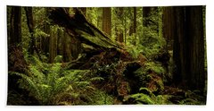 Old Growth Forest Beach Towel