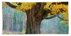 Old Maple Tree And Swing In Autumn Color Beach Sheet