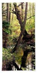 Old Oak Beach Towel by Henryk Gorecki