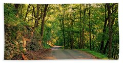 Beach Towel featuring the photograph Old Plank Road by Cricket Hackmann