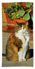 Beach Towel featuring the photograph Old Town Cat by Nikolyn McDonald