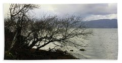 Beach Towel featuring the photograph Old Tree By The Bay by Chriss Pagani