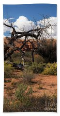 Old Tree In Capital Reef National Park Beach Towel